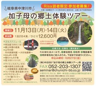 11-13-14_risa10.jpg